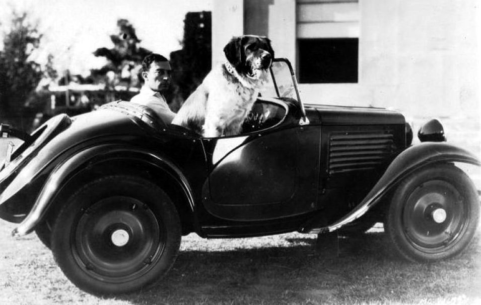 http://moviecollectoroh.com/pics_to_hotlink_on_TCM/keaton-dog-car_opt.jpg